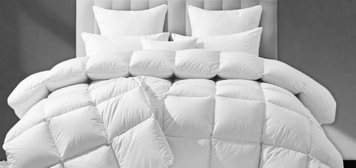 Best Duvet Comforter